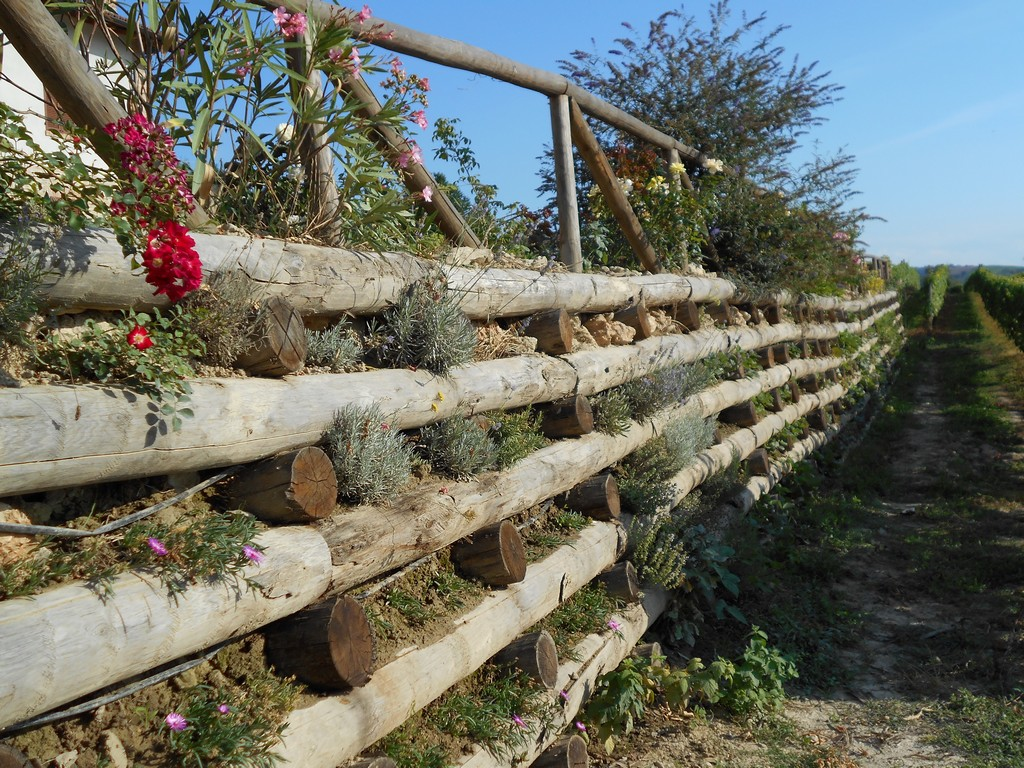 Ci emme pali per vigneto in acciaio ferro legno cemento - Palizzate in legno per giardino ...